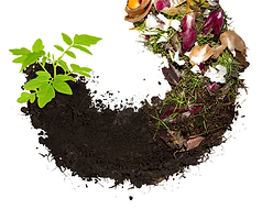 The-Composting-Circle-of-Life.png