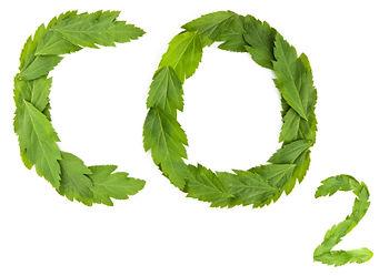 carbon-credit.jpg