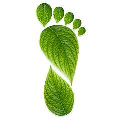 green-footprint_700x700.jpg