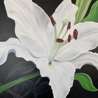 An open lily