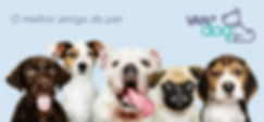 banner_dogs.png