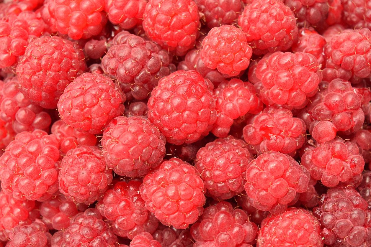 raspberries-1495713.jpg