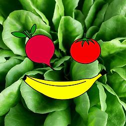 Logo_salad.png