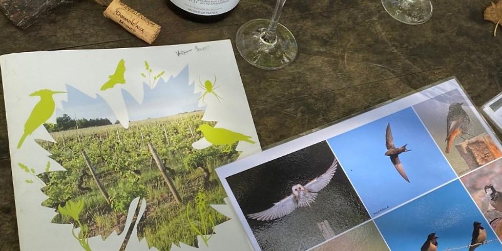 Lecture de paysage viticole : « vins et oiseaux