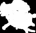 Logo_SWS_BeachAcademy_weiss_2017_weiss.p