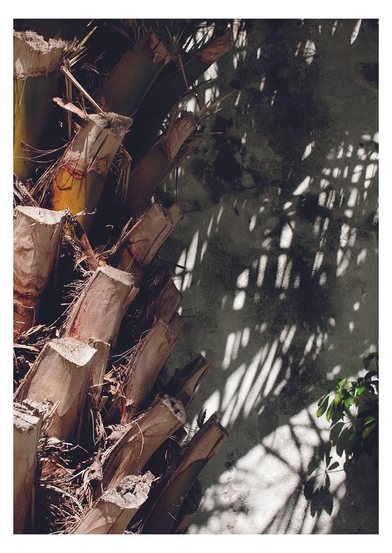 Beth Steddon Photography Brighton.jpg