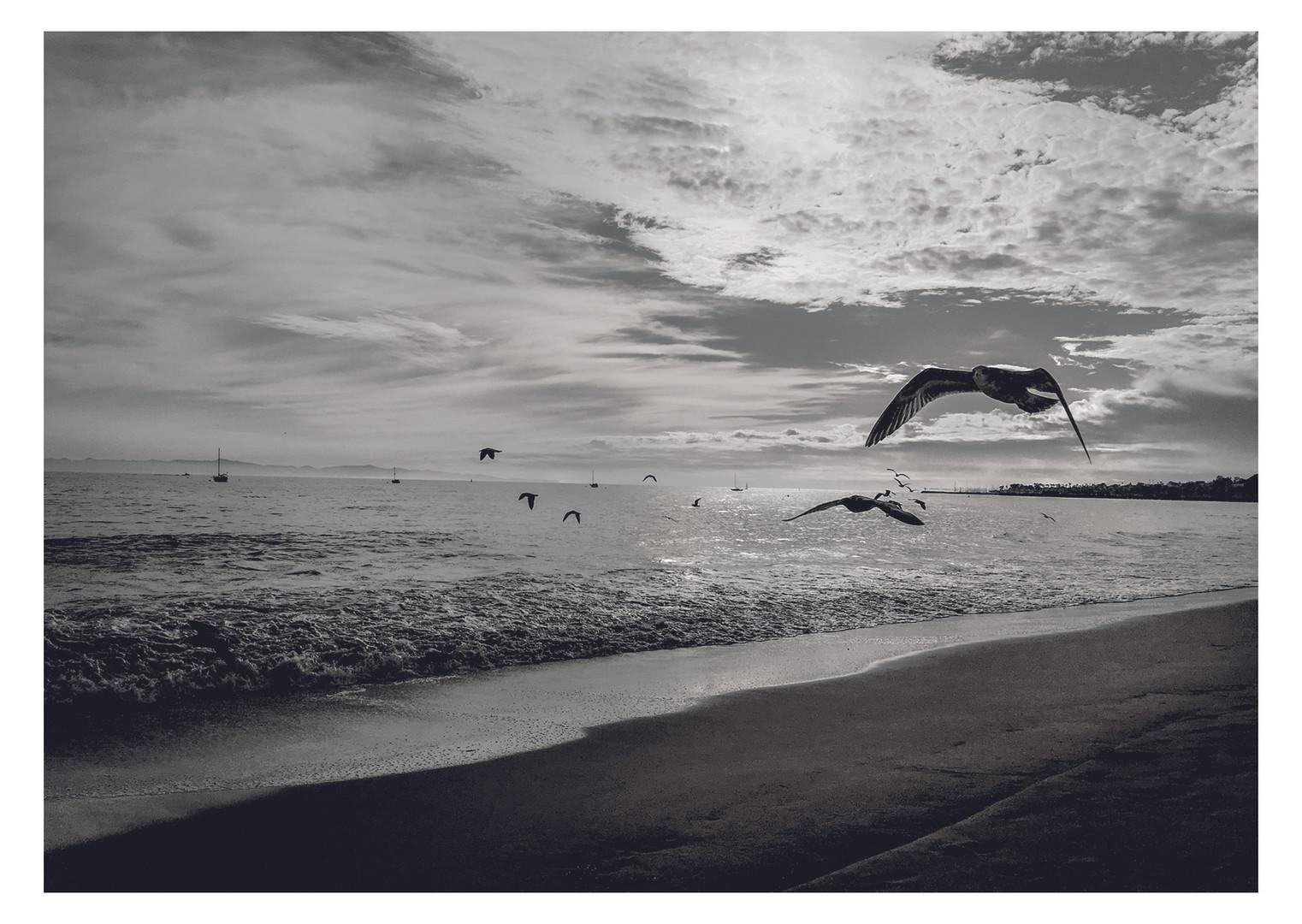 Brighton portrait photographer Beth Steddon .jpg