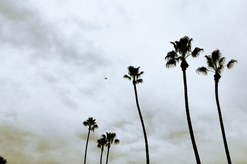Los Angeles-7335.jpg