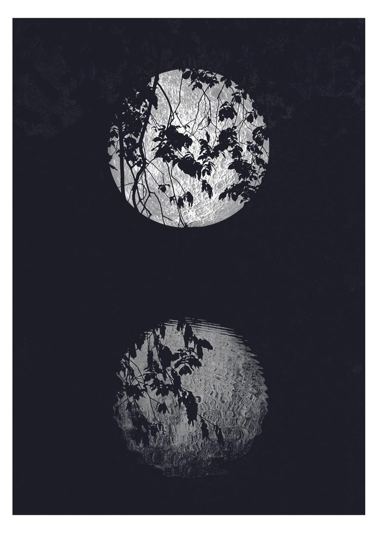 Moon Brighton Photographer Beth Steddon