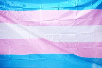 Transgender flag celebrating LGBTQ Pride for June, 2019._edited.jpg