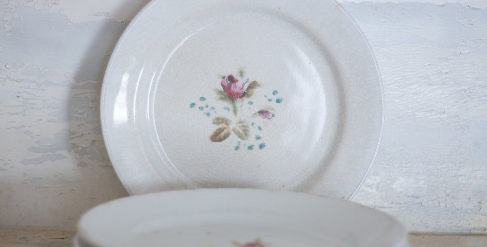 antique ironstone floral plate set of 6