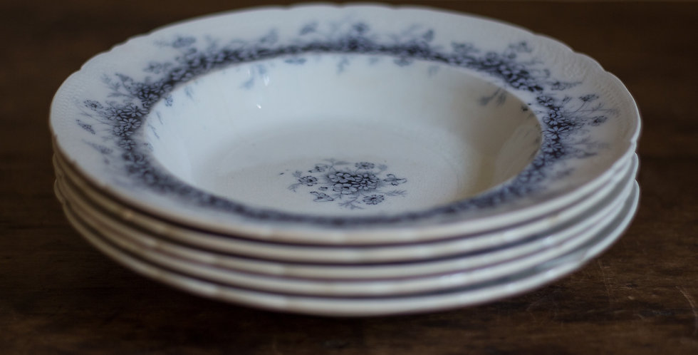 blue and white ironstone plates | set of 5