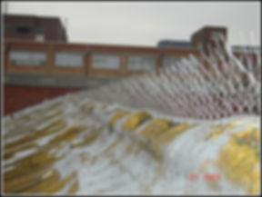 bird spikes (1).JPG