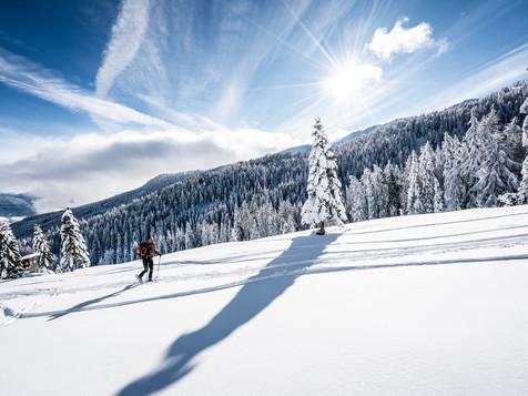 Stimmungsvolle Winterlandschaft