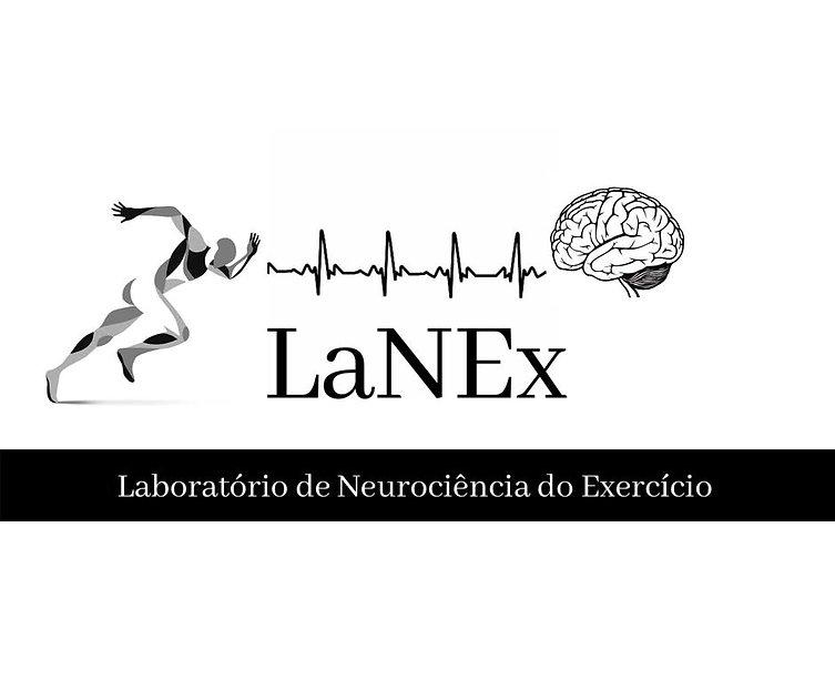 lanex.jpg
