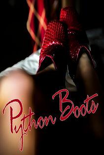PYTHON BOOTS TSHIRT.jpg