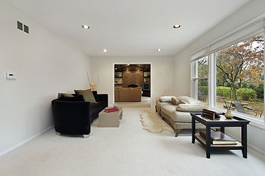 Taj Carpets - Beautiful living room