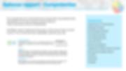 Plaatje Opbouw Rapport - competenties va