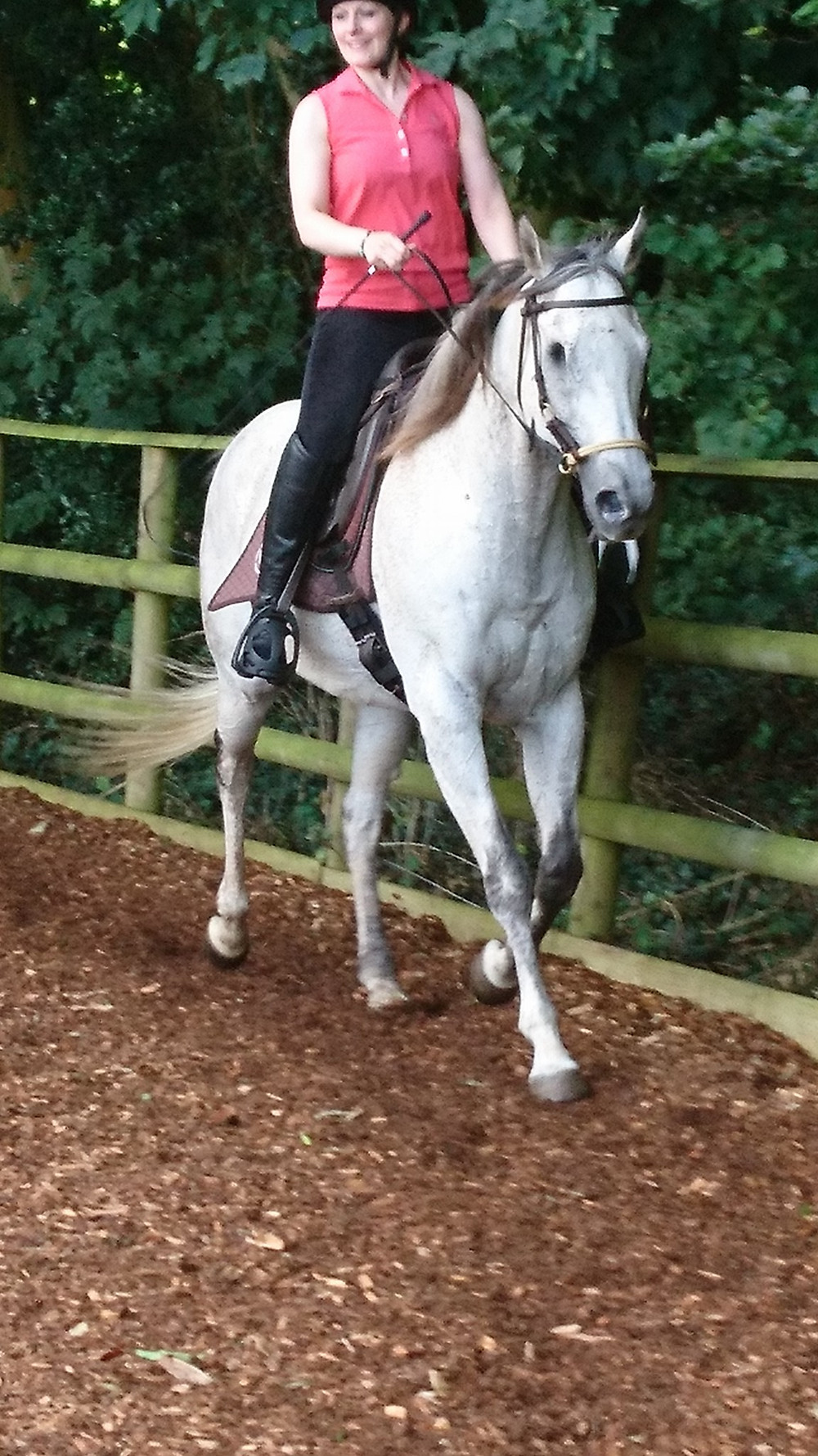 barefoot, one eyed thoroughbred being ridden in a bitless bridle and treeless saddle at Pippsway Classical Natural Horsemanship Wellington Somerset near Devon