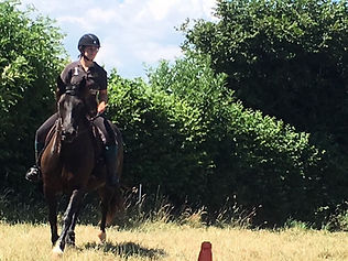 novice rider barefoot rescue pony treeless saddle classical horsemanship natural horsemanship affinity connection harmony Horse Connection Clinic Pippsway Wellington Somerset near Devon