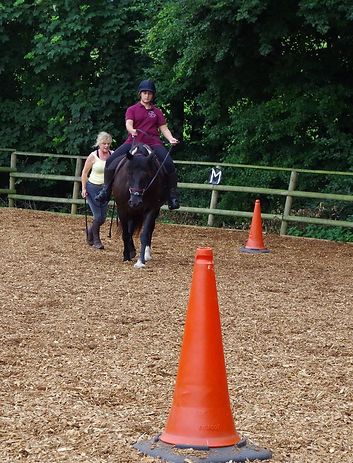 Novice beginner schooling pony training rehabilitation natural horsemanship building affinity Pippsway Classical Natural Horsemanship Wellington Somerset