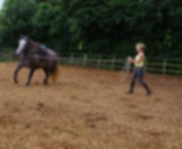 Philippa Unwin Classical Natural Horsemanship Trainer in Wellington Somerset near Devon schooling training young horse successful horsemanship