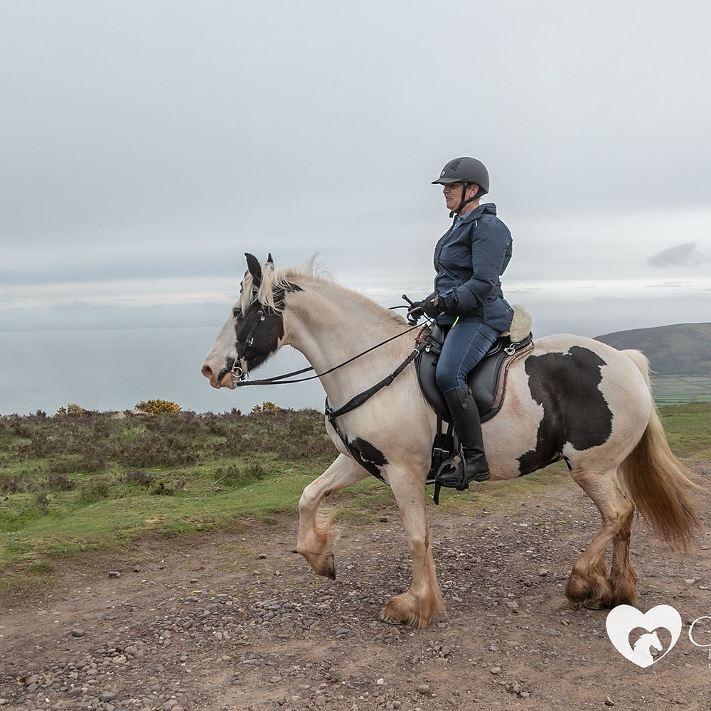 June and Gerty enjoying a fun ride on a loose rein at Pippsway Classical Natural Horsemanship Wellington Somerset near Devon