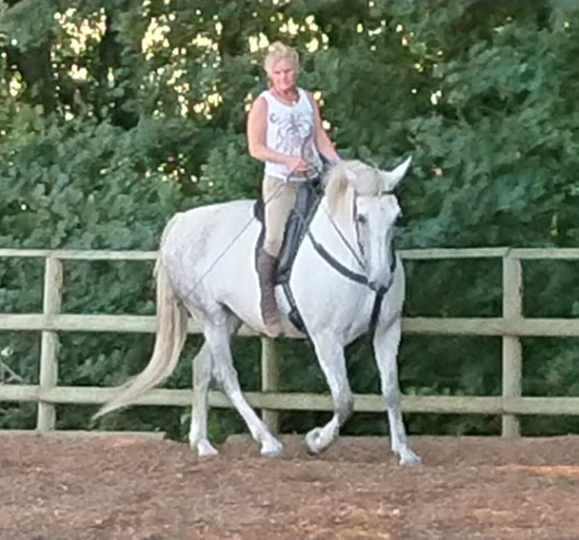 Pip schooling Spanish mare at Pippsway Classical Natural Horsemanship Wellington Somerset near Devon