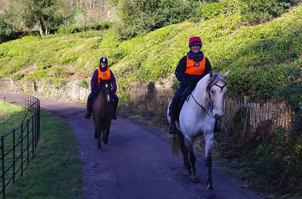 Hacking out with Pippsway Classical Natural Horsemanship Wellington Somerset near Devon