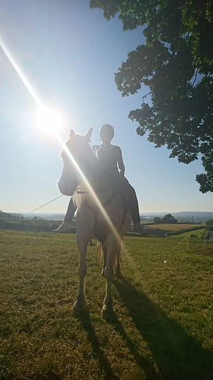 early lesson barefoot rider barefoot saddle barefoot pony Horse Connection Clinic affinity harmony connection Pippsway Wellington Somerset near Devon