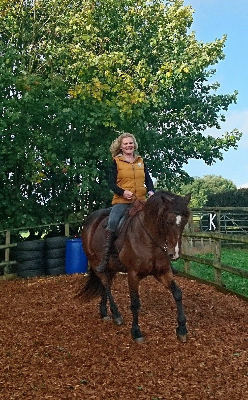 Collection on a loose rein at Pippsway Classical Natural Horsemanship Wellington Somerset near Devon