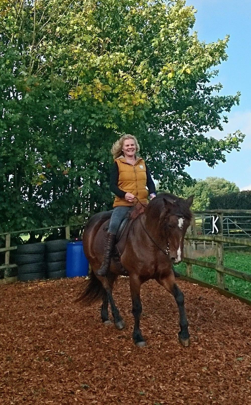 barefoot pony, treeless saddle, classical horsemanship, natural horsemanship, harmony, connection, Pippsway Wellington Somerset near Devon