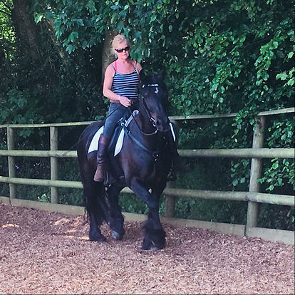 training livery schooling horse connection clinic Pippsway Natural Classical Horsemanship Wellington Somerset