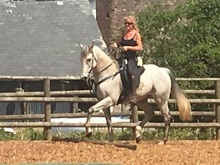 schooling barefoot ex-racehorse Horse Connecton Clinic Pippsway Classical Natural Horsemanship Wellington Somerset near Devon