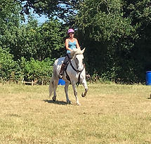 Barefoot treeless saddle Horse Connection Clinic Pippsway Wellington Somerset near Devon