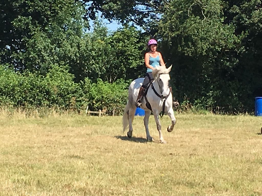 schooling in the grass menage at Pippsway Classical Natural Horsemanship Wellington Somerset near Devon