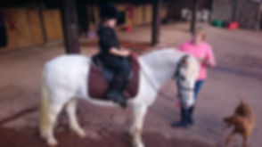 children horse pony natural horsemanship riding lesson schooling training Pippsway Classical Natural Horsemanship Wellington Somerset