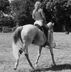 Pip Unwin Classical Horsemanship trainer ex-racehorse rehabilitation barefoot treeless saddle harmony affinity connection Horse Connection Clinic Pippsway Wellington Somerset near Devon