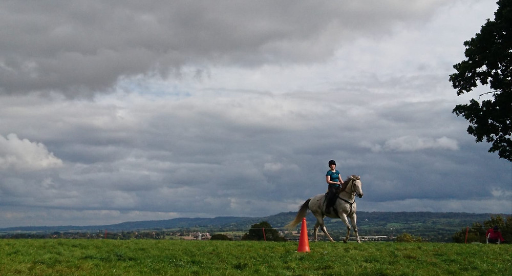 Horse and rider in the grass menage at Pippsway Classical Natural Horsemanship Wellington Somerset near Devon