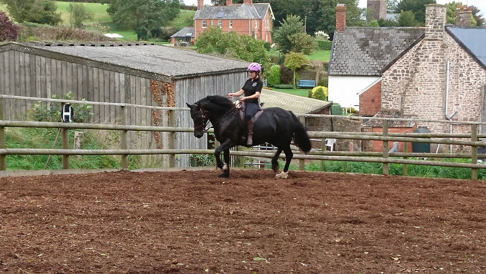 riding without stirrups Pippsway Classical Natural Horsemanship Wellington Somerset near Devon