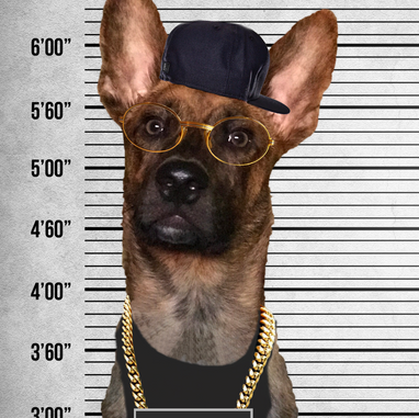 Free my dawg Logez