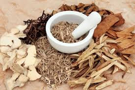 What can Chinese Herbal Therapy do to help your pets?
