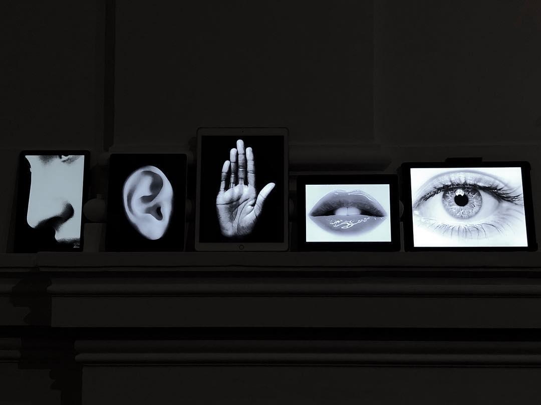 Die Fünf Sinne