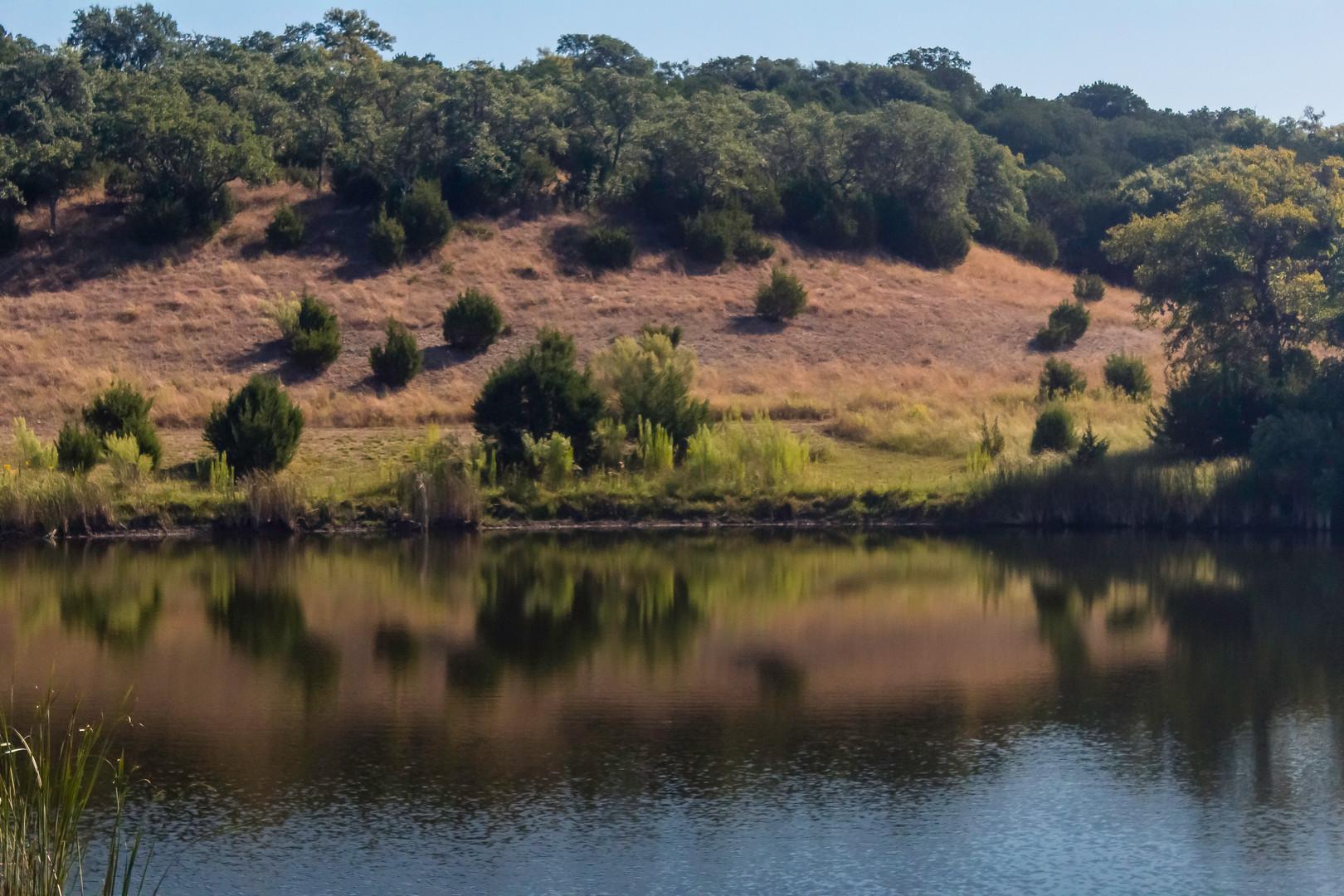 Landscapes_9550.jpg