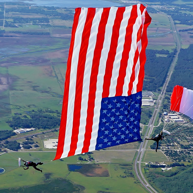 CFS_Dynamic Show DownplaneFlag.JPG