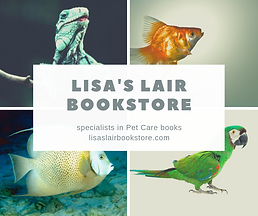 Lisa's Lair Bookstore.png