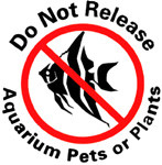 Why it is important to not release your fish and plants!