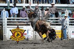 steer riding-edited.jpg