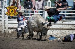 bull riding-edited.jpg