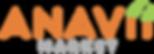 Anavii_Market_Logo (1).png